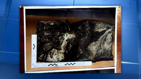 Crash A320: la seconde boîte noire a été retrouvée