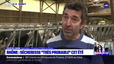 """Rhône: une sécheresse """"très probable"""" cet été"""