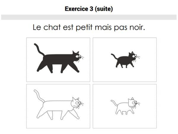 Un exercice figurant dans les évaluations de français de CE1.