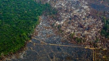 Vue aérienne de la déforestation dans une réserve biologique à Altamira, dans l'Etat de Para, au Brésil, le 28 août 2019