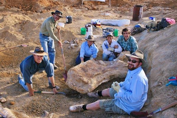 Les fossiles de dinosaure découverts dans le bassin d'Eromanga