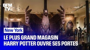 Le plus grand magasin Harry Potter au monde vient d'ouvrir ses portes à New York