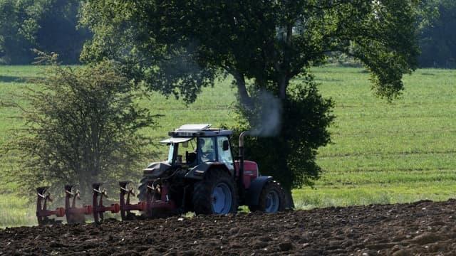 La pension mensuelle brute touchée par les chefs d'exploitations agricoles atteint actuellement autour de 953 euros en moyenne pour les hommes et 852 euros en moyenne pour les femmes, des chiffres masquant de fortes disparités