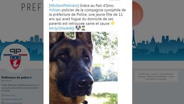 Izno, chien de la préfecture de police de Paris.