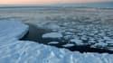 La disparition du Gulf Stream pourrait avoir des conséquences sur la calotte glaciaire de l'Antarctique.