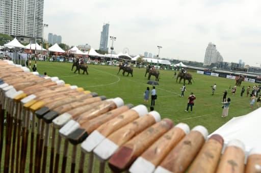 Un tournoi de polo à dos d'éléphants se déroule en plein coeur de Bangkok, le 10 mars 2016