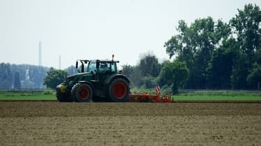 Un tracteur dans un champ de culture (Photo d'illustration).