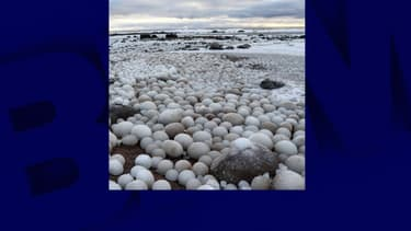 La plage finlandaise Marjaniemi recouverte d'oeufs de glace.