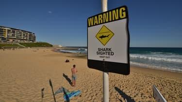Panneau de signalisation indiquant la présence de requins en Australie (illustration)