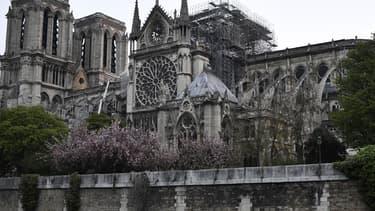 Emmanuel Macron a promis de reconstruire d'ici cinq ans le joyau de l'art gothique en partie détruit par un incendie il y a trois semaines -