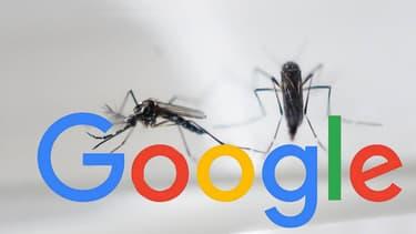 Une carte interactive, des fonds levés et une collecte en interne, Google multiplie les initiatives pour lutter contre Zika