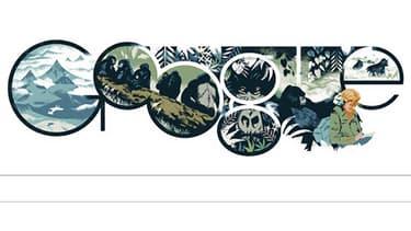 Un Doodle pour l'éthologue américaine Dian Fossey.