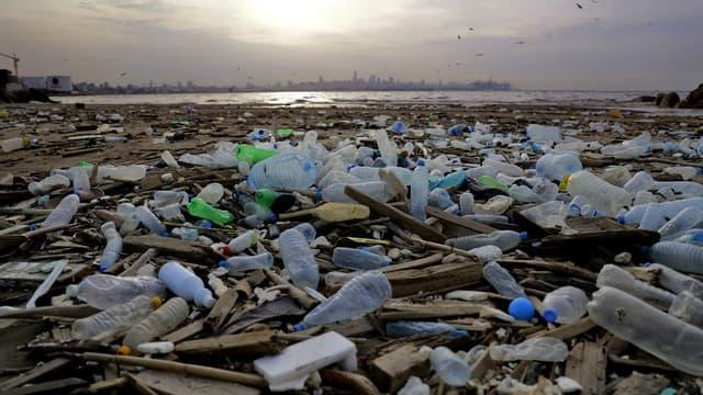 Cotons-tiges, pailles, touillettes à café: ces produits en plastique à usage unique seront dans l'avenir interdits dans l'Union européenne.