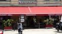 En 2016, 10 restaurants Hippopotamus ont été ouverts.