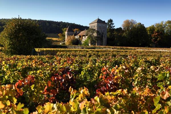 Le château de Gevrey-Chambertin, en Côte-d'Or