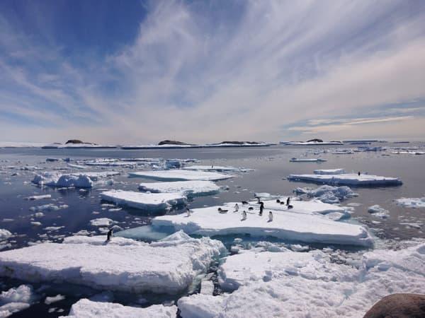 Des morceaux de banquise en Antarctique, en 2020