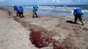 Nettoyage d'une plage en Louisiane. La tentative de colmatage que prévoit BP cette semaine sur son puits de pétrole à l'origine d'une marée noire dans le golfe du Mexique a entre 60 et 70% de chances de réussite, selon un responsable de la compagnie. /Pho