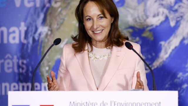 Les services de la ministre de l'Environnement ont préparé plusieurs arrêtés encadrant plus strictement l'usage de produits chimiques et phytosanitaires en France. (image d'illustration)