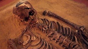 Le squelette reconstitué d'un homme ayant vécu il y a 2.500 ans, exposé en janvier 2014 à Beyrouth au Liban