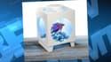 Le fabricant de ces lampe de chevet-aquarium reste sourd aux critiques.