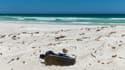 Une bouteille sur une plage
