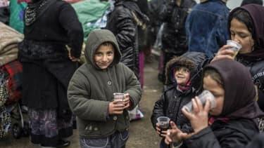 Les Etats de l'UE ne protègent pas assez les Roms, selon Amnesty