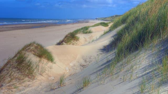 Les dunes du Touquet