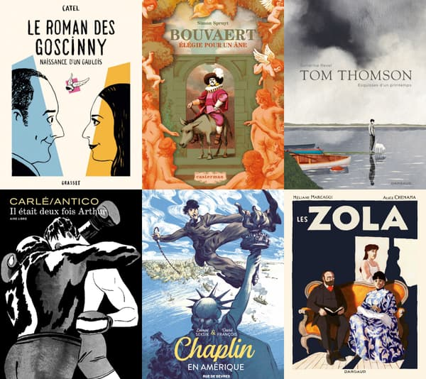 Quelques exemples de BD historiques et de biographies dessinées.