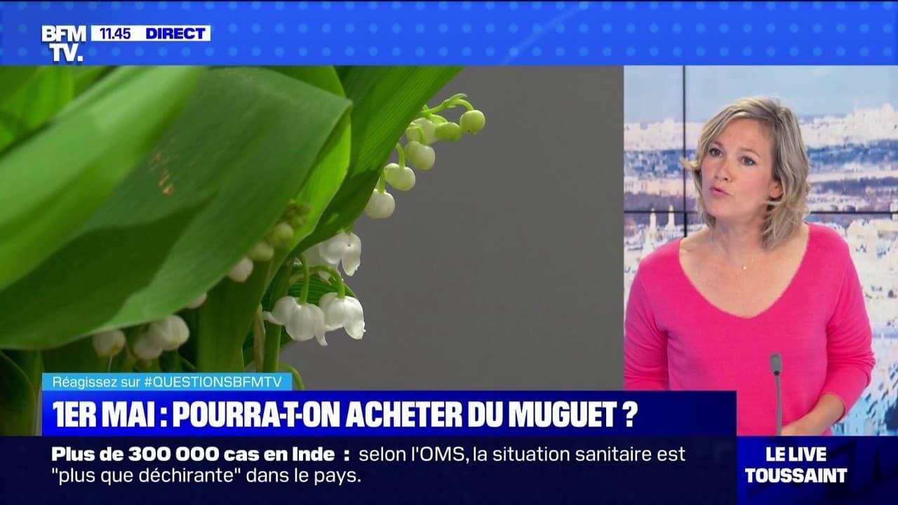 Où pourra-t-on acheter du muguet pour le 1er-Mai ? BFMTV répond à vos questions