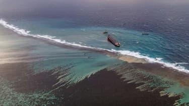 Plus de 1000 des 4000 tonnes de carburant se sont déjà déversées dans les eaux de l'île Maurice.