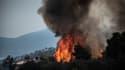 Eubée avait déjà connu des feux importants en 2019, comme le montre cette photo prise à l'époque.