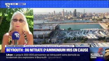 """La présidente de l'association des sinistrés de l'usine AZF juge """"criminel"""" le stockage d'une telle quantité de nitrate d'ammonium à Beyrouth"""