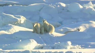 Le Pôle Nord attire toutes les convoitises