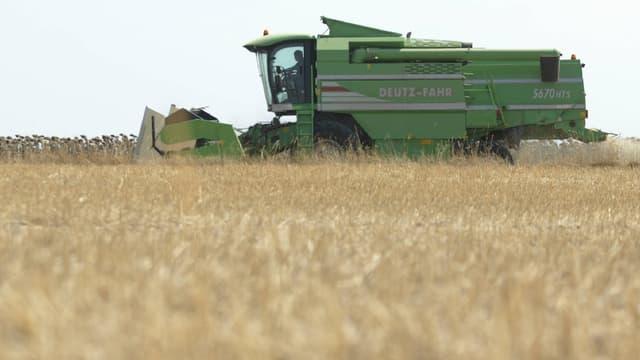 Le réchauffement climatique pourrait, en réduisant la productivité agricole provoquer plus de 500.000 décès supplémentaires. (image d'illustration)
