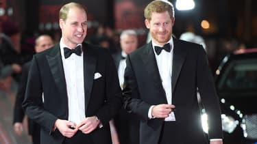 Le prince William et le prince Harry à Londres le 12 décembre 2017