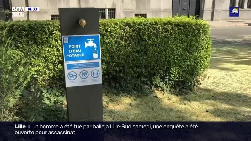 Canicule: dix fontaines d'eau potable installées à Lille