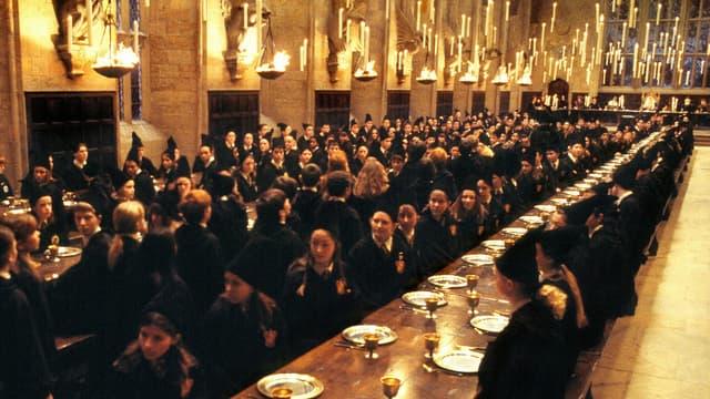 Capture d'écran - Harry Potter