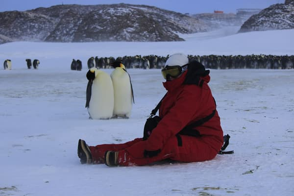 La chimiste Charlène Garau en compagnie de manchots empereur en Antarctique, en 2020
