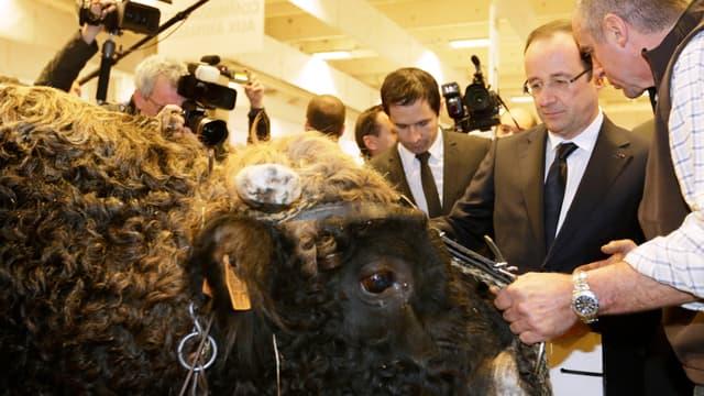François Hollande au Salon de l'Agriculture, samedi 23 février.