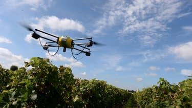 Les viticulteurs font appel aux drones pour vérifier la maturité du raisin.