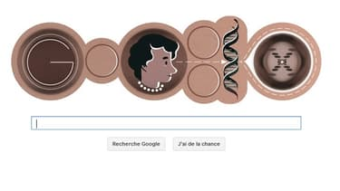 Le Doodle du 25 juillet rend hommage à la scientifique britannique Rosalind Franklin.
