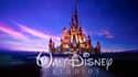 Le titre Disney a atteint un plus haut historique après l'annonce du nouveau service de streaming Disney +.