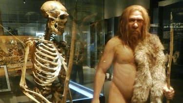 Reconstitution d'hommes préhistoriques dans un musée de Tokyo.