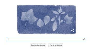 le doodle du 16 mars est consacré à la botaniste Anna Atkins.
