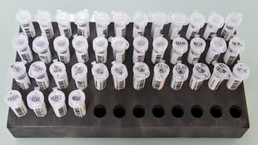 Des échantillons d'ADN à l'Institut génétique de Nantes-Atlantiques. (photo d'illustration)