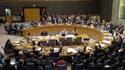 Le Conseil de sécurité des Nations-Unies.