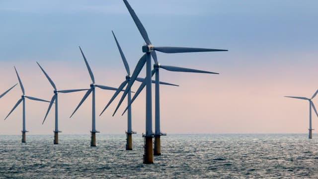 Un parc éolien offshore (image d'illustration)