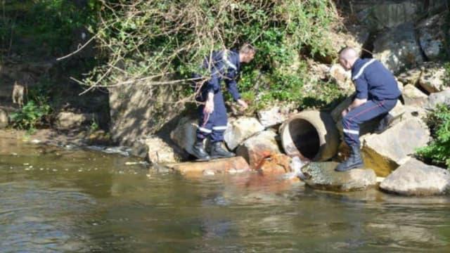 Les pompiers à pied d'oeuvre pour fermer la vanne à l'origine du déversement de produits laitiers dans l'Odet.