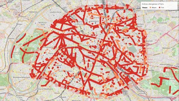 Carte des arbres allergènes à Paris