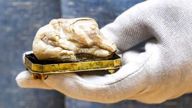 """La """"Sleeping Lion pearl"""", vendue pour plus de 300.000 euros aux Pays-Bas"""